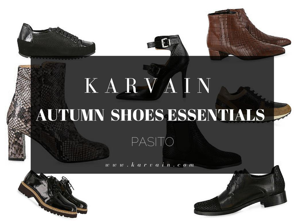 karvain_autumn_shoes_pasito